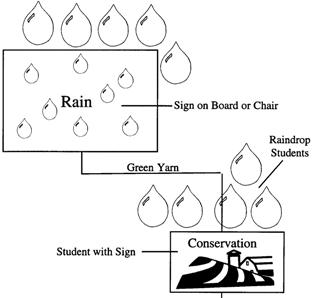 Raindrops fall on conservation practice