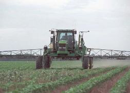 Photo: herbicide application
