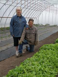 Randy and Robin Kelly pose near the row of lettuce they planted last fall