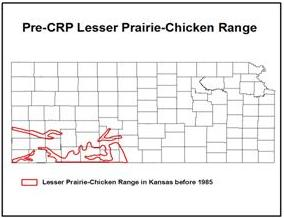 map showing pre-CRP lesser prairie-chicken range in Kansas