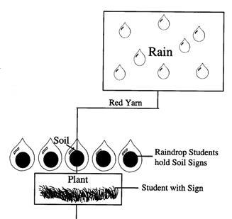 Raindrops pick up Soil