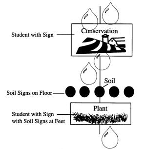 Conservation slows down raingdrops; plant is able to hold onto soil.