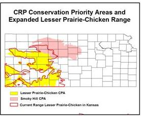 map showing CRP Conservation Priority Areas and expanded lesser prairie-chicken range