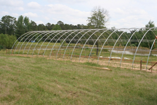 Season high-tunnel hoop house.