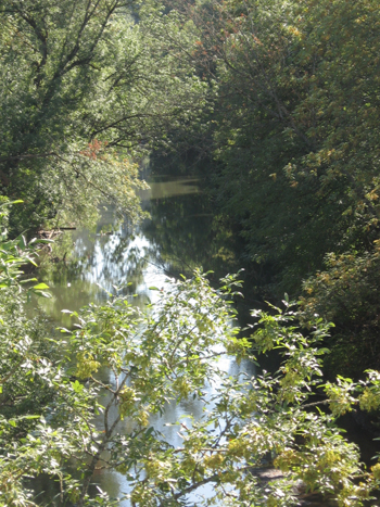 The Tualatin River drains most of Washington County.  The river provides drinking water, irrigation water, wildlife habitat and recreational opportunities