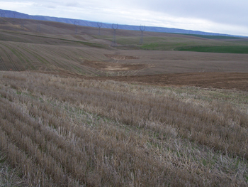 Farm over Water and Sediment Control Basins designed to control ephemeral gully erosion in crop fields