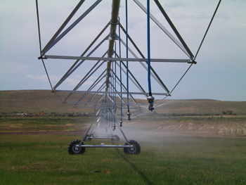 Irrigation in Baker County