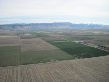 major crops in the Grande Ronde Valley (mint, wheat, grass seed, and alfalfa)