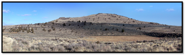 BEFORE: Invasive juniper were removed from this sagebrush steppe community to restore sage grouse habitat in Crook County Oregon