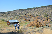 Frank and Sharon Catterson survey downed juniper on their ranch.