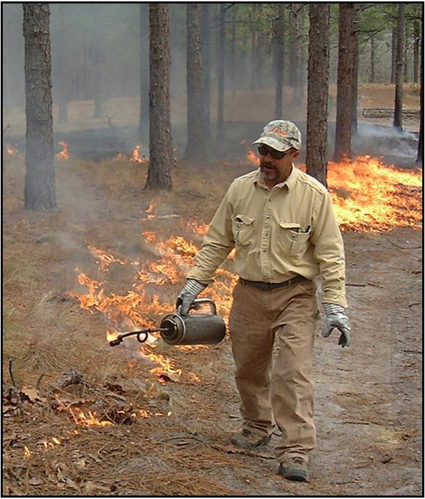 Forester conducting prescribed burn on Walthour Moss Foundation Lands