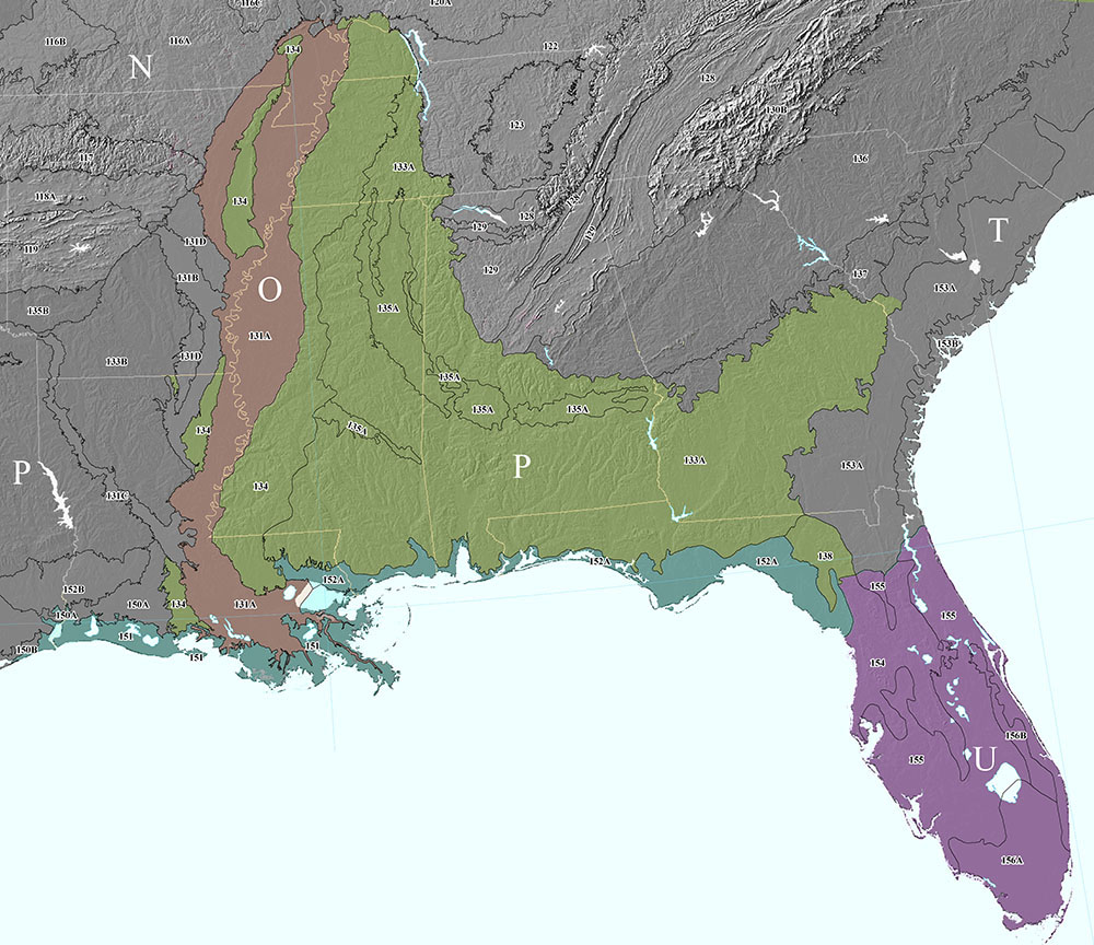 Map Of Southern Florida Gulf Side.Mlras In Mo 7 Nrcs Soils