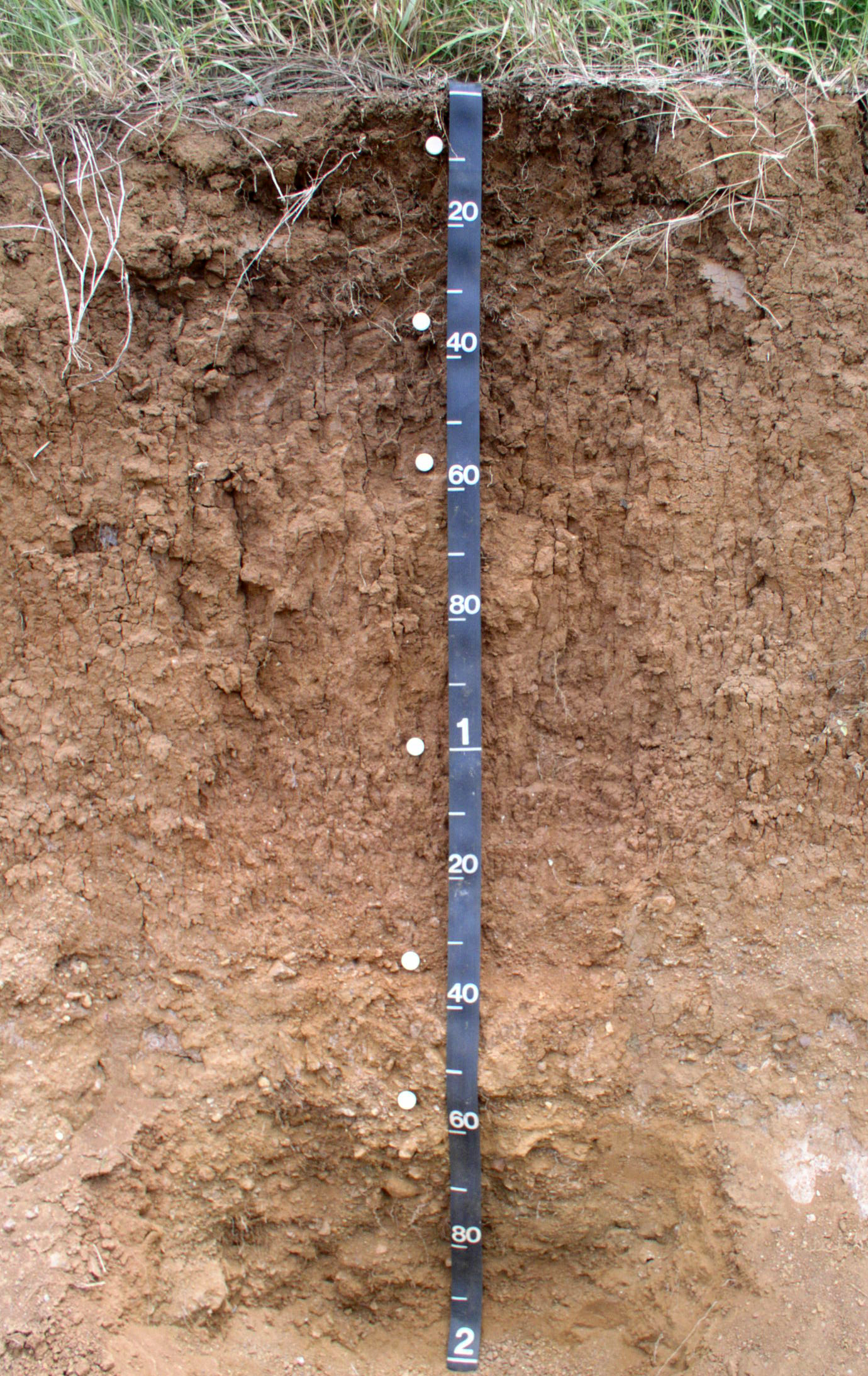 Llanos costa soil profile nrcs soils for Soil details