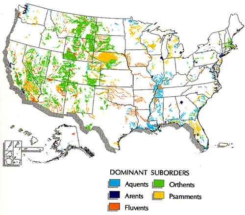 Map of where Entisols are found in the United States.