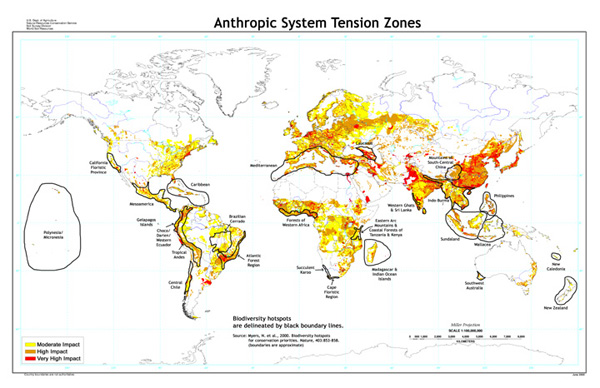 Anthropic System Tension Zones Map