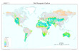 Global Soil Inorganic Carbon map
