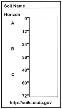 Sample of a soil profile card.