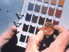 photo of soil scientist comparing soil to a color book