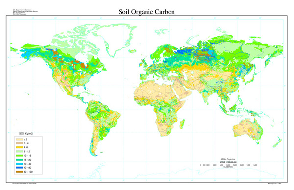 soil organic carbon map nrcs soils