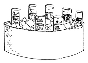 drawing of centrifuge tubes sitting in an ice bath
