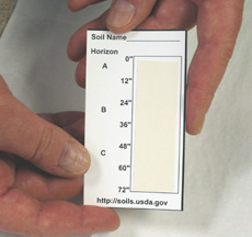 Picture of a soil profile card with carpet tape in the box for horizons.