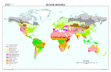 Global Biomes map