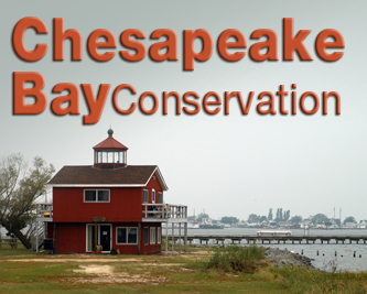 Chesapeake Bay Conservation - image of structure.