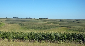 Schwenke has installed 54 acres of contour buffer strips, 104 acres of filter strips and several grassed waterways since 1998 to control soil erosion.