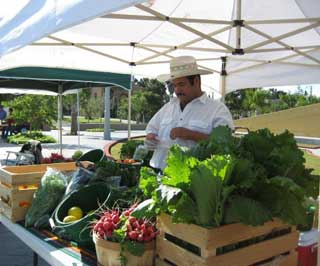 Saul has a farming background, an experience he enjoys sharing with his customers at the farmers markets where the Padillas sell their fresh produce.