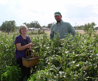 Kirk Dahl, NRCS district conservationist in Hartley and Janie Ray, community volunteer, are two of the many volunteers who helped to start and maintain the Community Garden in Channing.