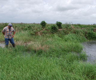 Bobby McGill, (rear), who manages the farming and outfitting operations for Will Beaty, (left), releases water into a fallow rice field that is part of the Migratory Habitat Bird Initiative. Beaty points out how quickly water levels can rise once water is released.