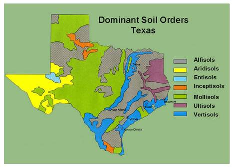 Dominant Soil Orders- Texas map