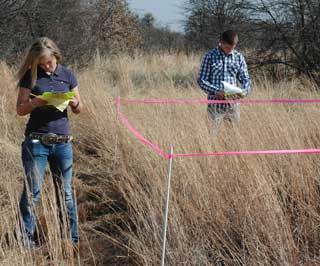 Two students write their answers after examining the type of grass species enclosed in a border-taped area