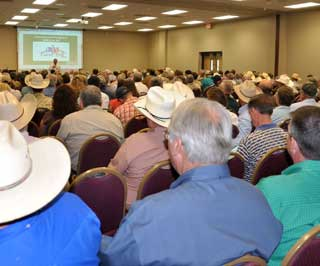 More than 1,400 people attended this year�s 57th Annual Texas A&M Beef Cattle Short Course held recently at Texas A&M University in College Station. Capacity crowds attended the forage management two-day workshops.
