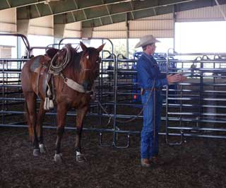 Curt Pate describes how sight, feel and sound are used in working cattle. These principles, when used correctly are applied to induce �pressure� on livestock in a low stress manner.