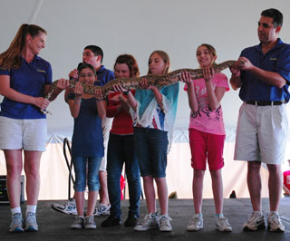 Zoomagination shows a Ball Python