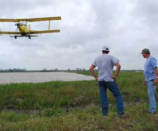 Shane Waller (left) and Cecil Slack (right) watch as aerial seeding takes place over their rice fields this spring. One airplane load of seed can cover an estimated 12 acres.