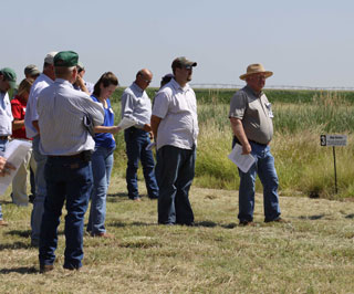 Participants toured demonstration sites where different varieties of perennial grasses are being studied for forage production.
