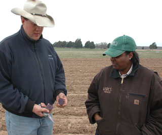 Ben Godfrey, left, organic farmer and owner of Sand Creek Farm, shows Todnechia Mitchell, right, NRCS district conservationist in Milam County, a Purple Majesty potato that is one of many varieties of potatoes grown on the farm. Godfrey offers several organically grown vegetables to the public, including onions, peas, potatoes, tomatoes, squash, melons, peppers, and okra.