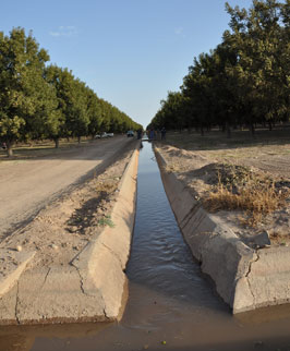 Concrete lined irrigation canals are one of many conservation practices utilized at Belding Farms, a 2,200 acre pecan orchard outside Ft. Stockton, Texas.
