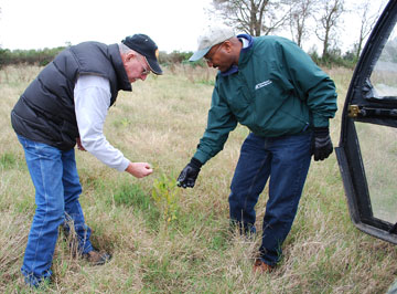 Mike Darnell of Lamar County, left, and Steve Smith, NRCS district conservationist, evaluate hardwood seedling trees planted this spring on Wetlands Reserve Program acreage.