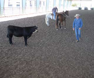 Curt Pate provides a lesson on Foot Working cattle, probably the most common method of working cattle on average to smaller sized ranches. His advice was to work the nose of the animal and the rest will follow.
