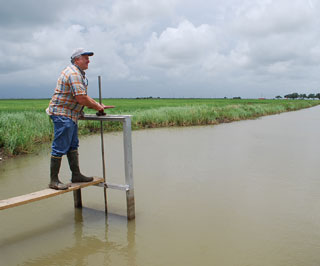 Will Beaty farms rice and operates Central Flyway Outfitters in Chambers County. He has three main water pumping stations and miles of canals for flooding rice fields, along with fallow fields.