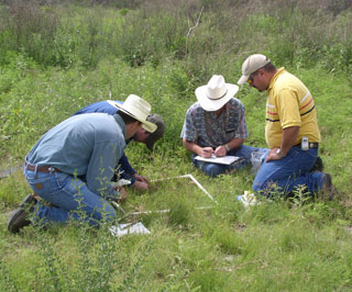 In order to develop Ecological Site Descriptions individuals or teams collect detailed vegetative and soil data in the field.