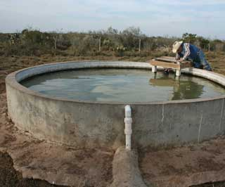 Concrete water troughs connected to wells by pipelines crisscross the entire ranch, providing water to the cattle. At each one, separate wildlife watering holes are provided exclusively for the use of birds and other wildlife.