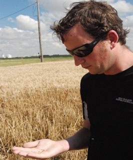 New Zealand grain crop farmer Paul McGill analyzes a handful of grain from Dale Swinburns wheat field in Tulia, Texas.