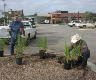 Grant Teplicek, District Conservationist in Giddings, worked with the Giddings Economic Development Board to plant native grasses around the Train Depot in Giddings. Teplicek will be able to use this People's Garden to help producers identify the native grasses they have on their places as well as show them how each one will benefit wildlife. Alton Weiser, caretaker at the Train Depot, assists Teplicek with the planting.
