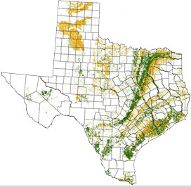 Texas Vertisol and Vertic Subgroup Soils - Map