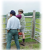 Two men standing next to a fence, gazing over a field