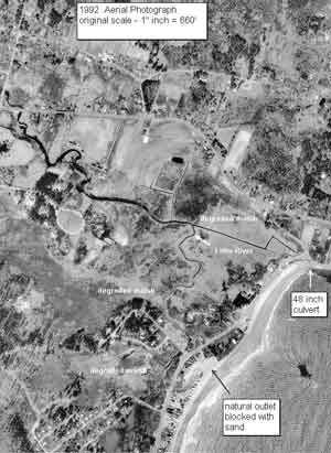 1992 aerial photo of Little River salt marsh with captions